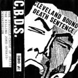 CBDS-Demo-2-Cover